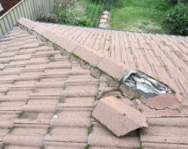 Roof-mold-and-cracking